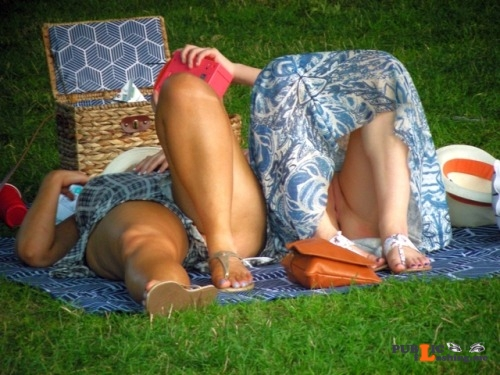 pantylessuniverse: Picnic oops flashing in public picture Public Flashing